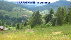 carpathians-4